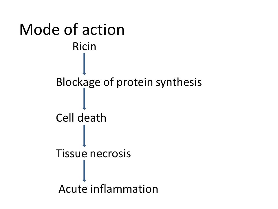 Mode of action Ricin Blockage of protein synthesis Cell death Tissue necrosis Acute inflammation