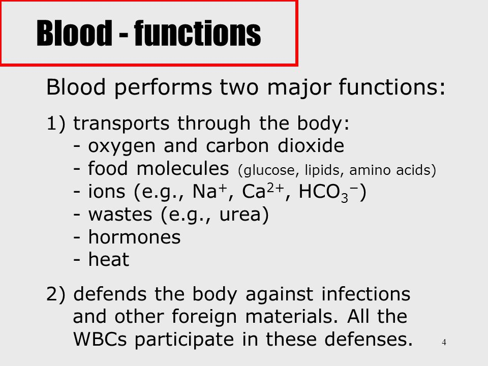 4 Blood performs two major functions: 1) transports through the body: - oxygen and carbon dioxide - food molecules (glucose, lipids, amino acids) - io