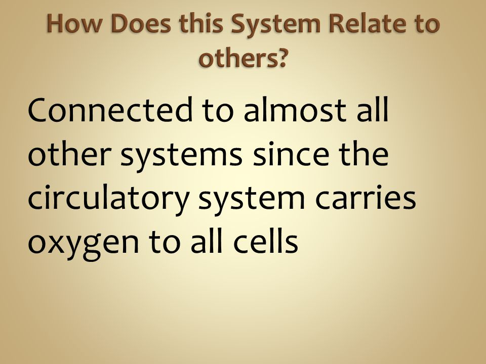 Connected to almost all other systems since the circulatory system carries oxygen to all cells