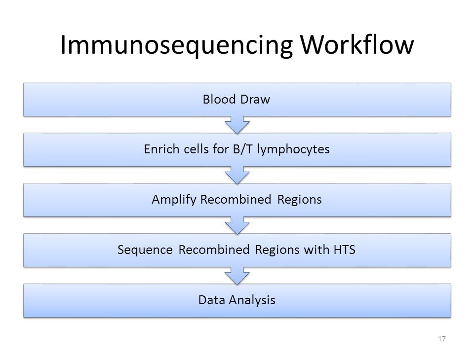 Immunosequencing Workflow Data Analysis Sequence Recombined Regions with HTS Amplify Recombined Regions Enrich cells for B/T lymphocytes Blood Draw 17
