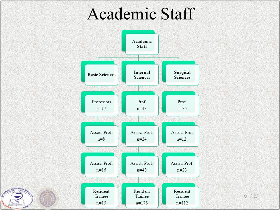 Academic Staff / 239 Academic Staff Basic Sciences Professors n=17 Assoc.