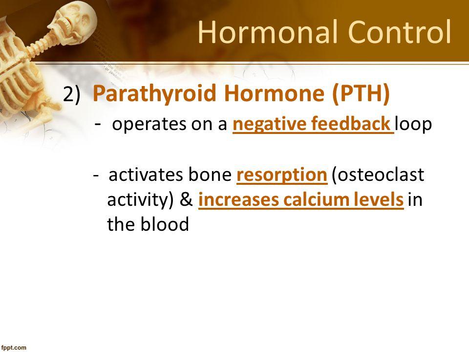 Hormonal Control 2) Parathyroid Hormone (PTH) - operates on a negative feedback loop - activates bone resorption (osteoclast activity) & increases cal