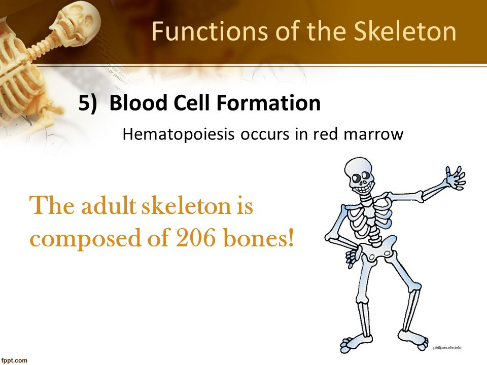 Nutrition & Bone Questions: 1.A pregnant woman is not getting enough calcium in her diet.