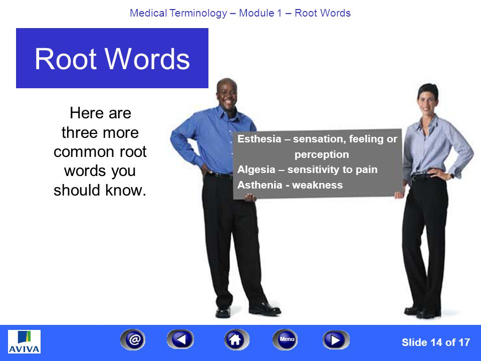 Menu Medical Terminology – Module 1 – Root Words Here are three more common root words you should know.