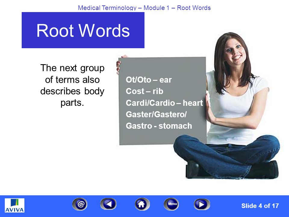 Menu Medical Terminology – Module 1 – Root Words Root Words The next group of terms also describes body parts.