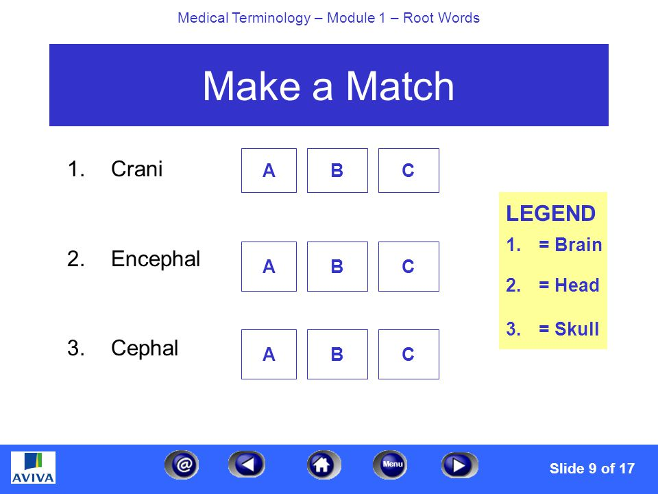 Menu Medical Terminology – Module 1 – Root Words Make a Match 1.Crani 2.Encephal 3.Cephal ABC ABC ABC LEGEND 1.= Brain 2.= Head 3.= Skull Slide 9 of 17