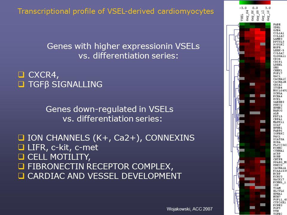 Genes down-regulated in VSELs vs.