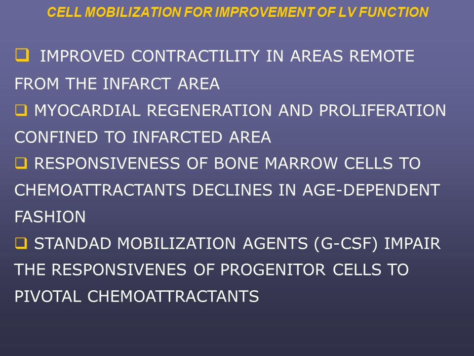 CELL MOBILIZATION FOR IMPROVEMENT OF LV FUNCTION  IMPROVED CONTRACTILITY IN AREAS REMOTE FROM THE INFARCT AREA  MYOCARDIAL REGENERATION AND PROLIFERATION CONFINED TO INFARCTED AREA  RESPONSIVENESS OF BONE MARROW CELLS TO CHEMOATTRACTANTS DECLINES IN AGE-DEPENDENT FASHION  STANDAD MOBILIZATION AGENTS (G-CSF) IMPAIR THE RESPONSIVENES OF PROGENITOR CELLS TO PIVOTAL CHEMOATTRACTANTS