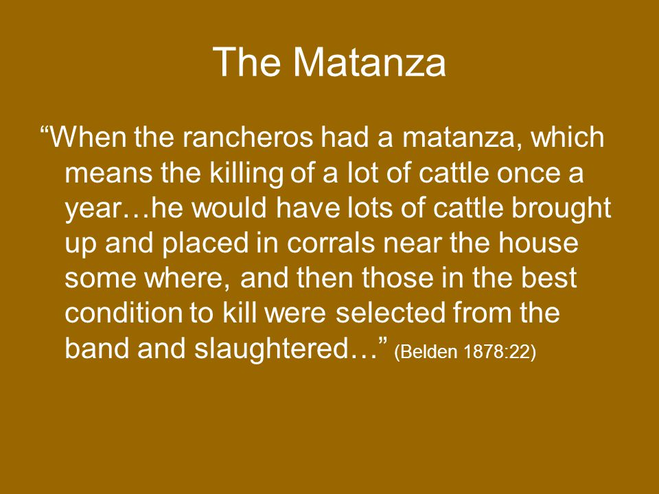 The Matanza When the rancheros had a matanza, which means the killing of a lot of cattle once a year…he would have lots of cattle brought up and placed in corrals near the house some where, and then those in the best condition to kill were selected from the band and slaughtered… (Belden 1878:22)