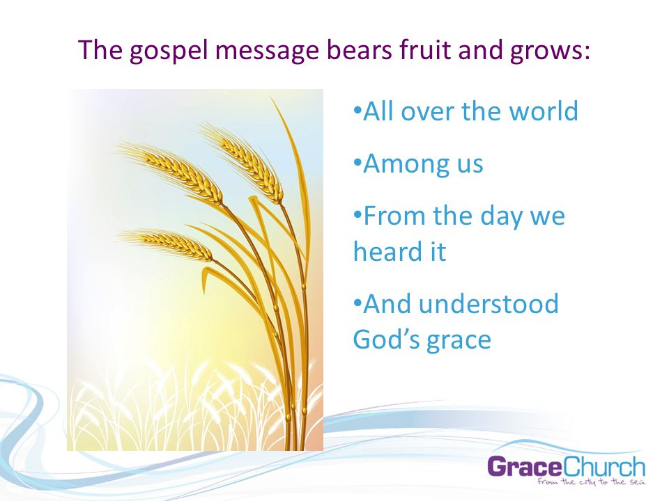 The gospel message bears fruit and grows: All over the world Among us From the day we heard it And understood God's grace
