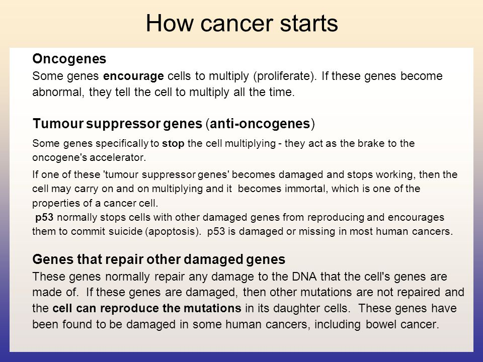 How cancer starts Oncogenes Some genes encourage cells to multiply (proliferate). If these genes become abnormal, they tell the cell to multiply all t