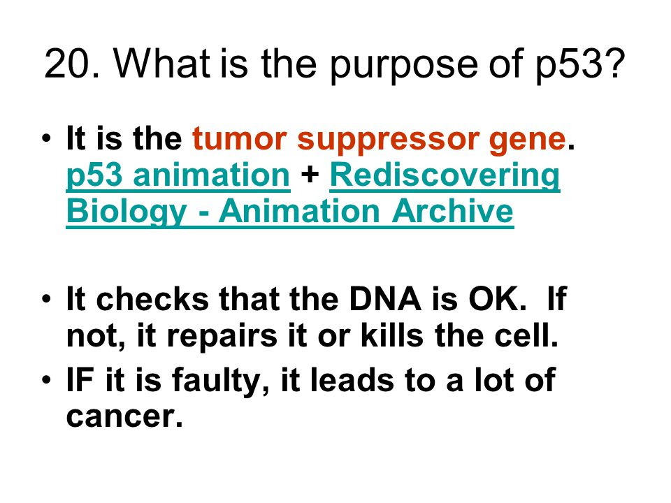 20.What is the purpose of p53. It is the tumor suppressor gene.