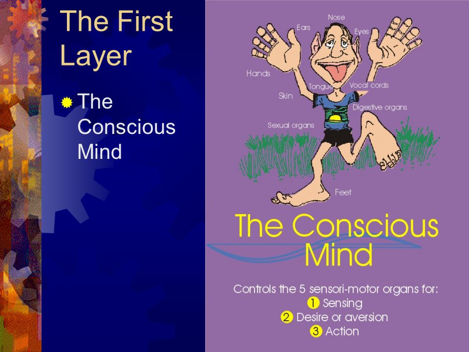The First Layer  The Conscious Mind