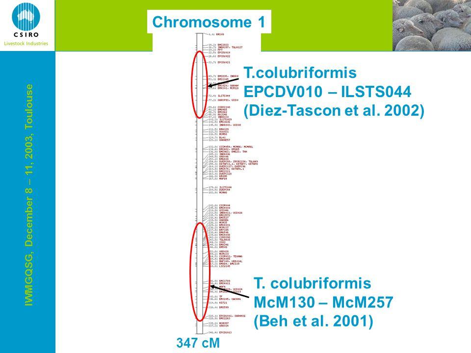 IWMGQSG, December 8 – 11, 2003, Toulouse 347 cM Chromosome 1 T.colubriformis EPCDV010 – ILSTS044 (Diez-Tascon et al.