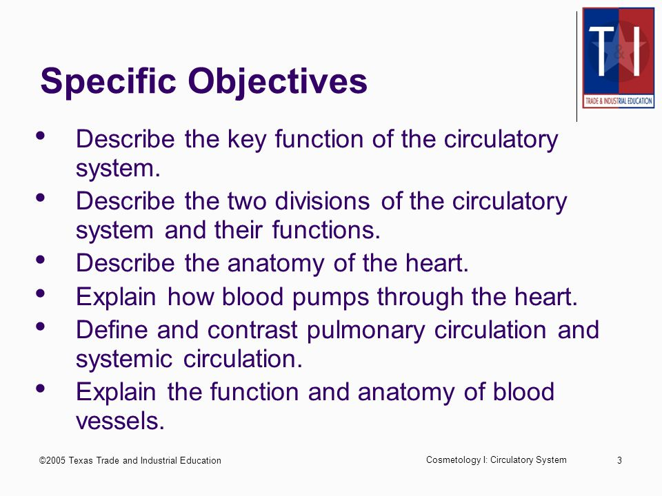 ©2005 Texas Trade and Industrial Education Cosmetology I: Circulatory System 3 Specific Objectives Describe the key function of the circulatory system.