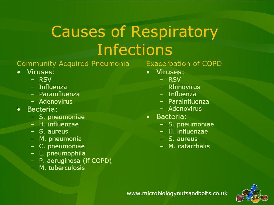 www.microbiologynutsandbolts.co.uk Causes of Respiratory Infections Community Acquired Pneumonia Viruses: –RSV –Influenza –Parainfluenza –Adenovirus B