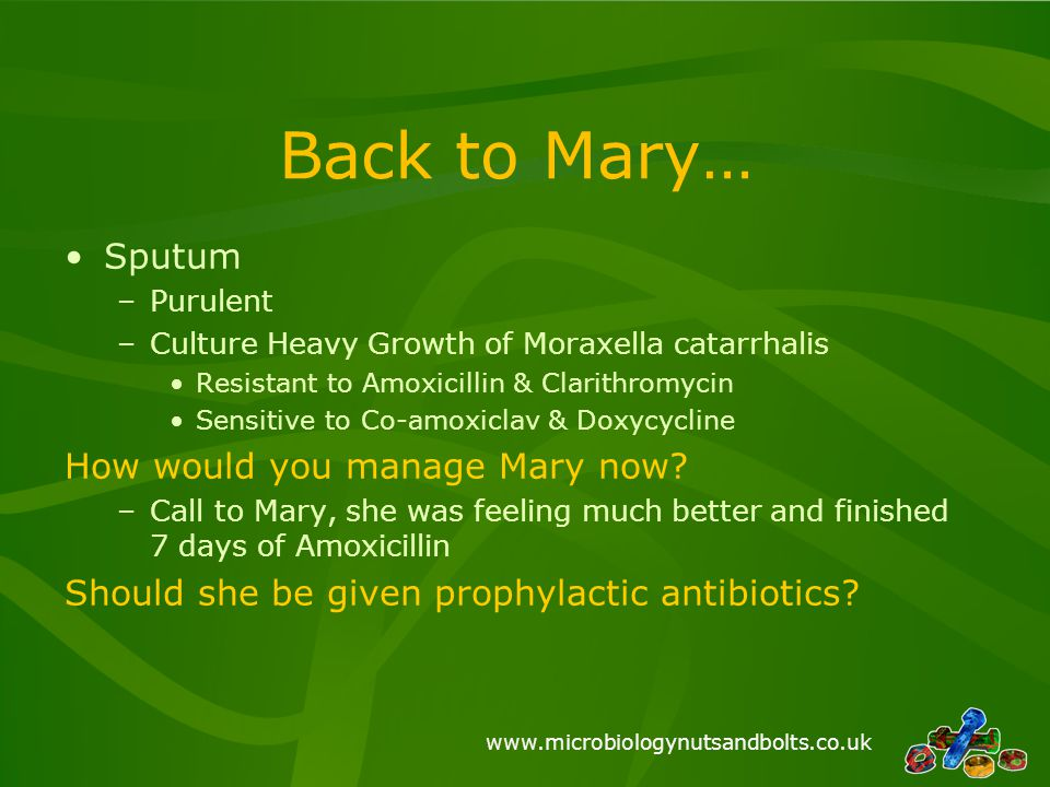 www.microbiologynutsandbolts.co.uk Back to Mary… Sputum –Purulent –Culture Heavy Growth of Moraxella catarrhalis Resistant to Amoxicillin & Clarithrom