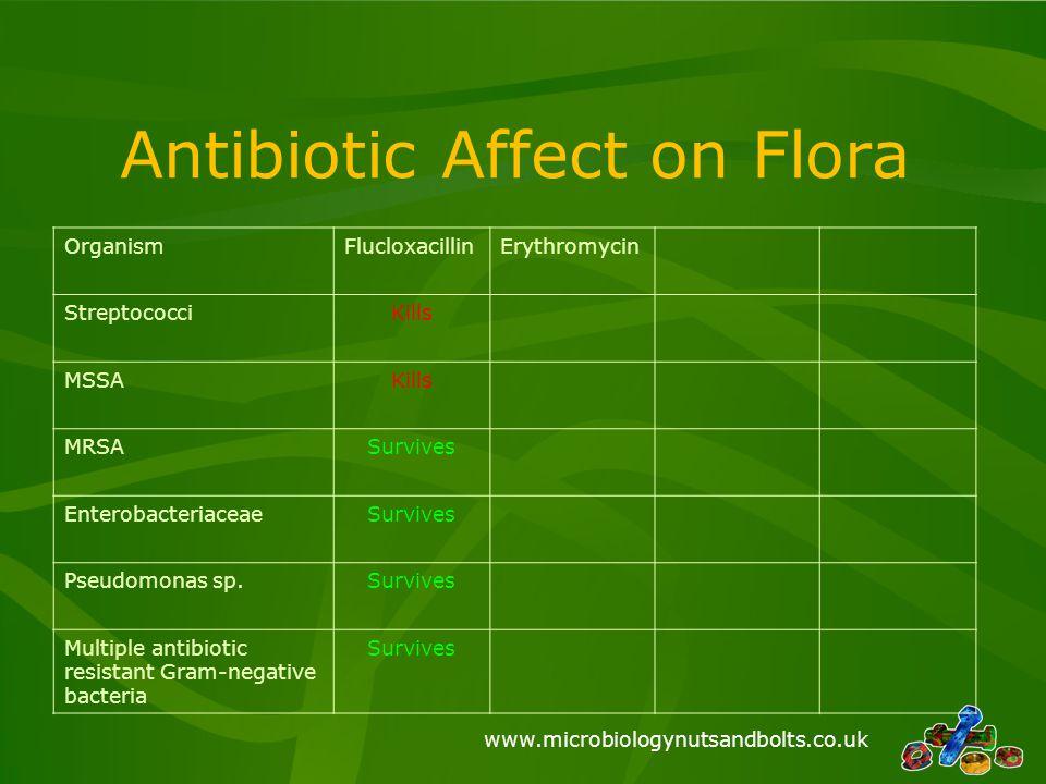 www.microbiologynutsandbolts.co.uk Antibiotic Affect on Flora OrganismFlucloxacillinErythromycin StreptococciKills MSSAKills MRSASurvives Enterobacter