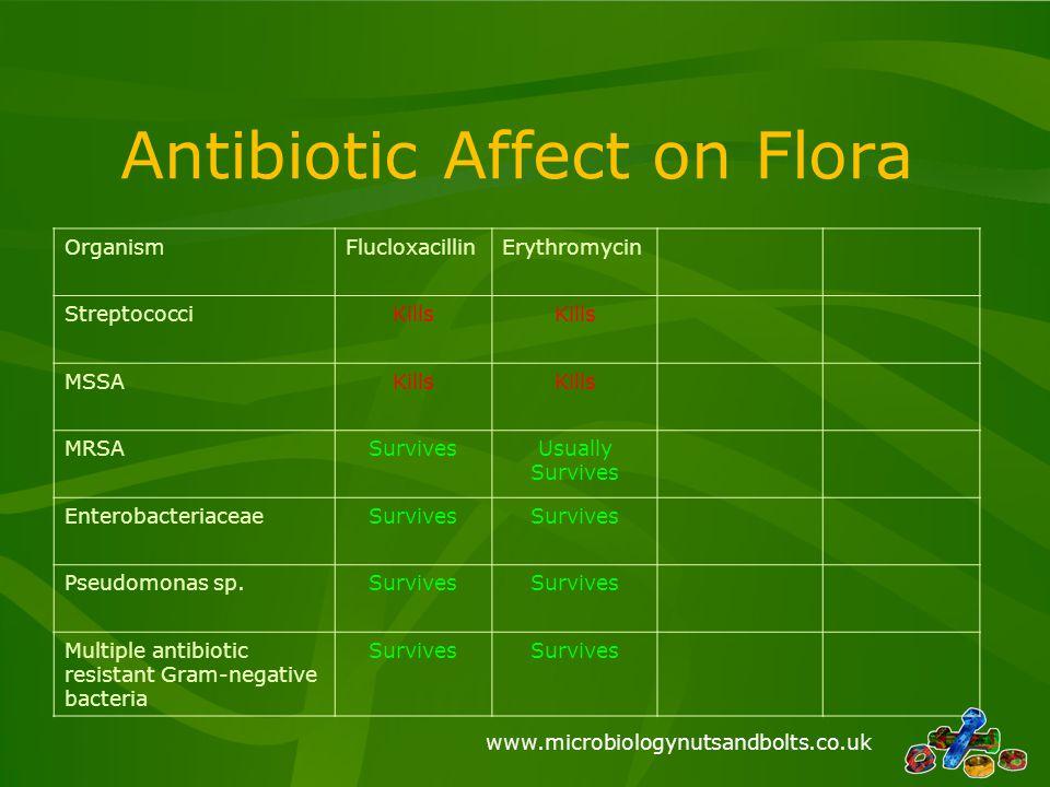 www.microbiologynutsandbolts.co.uk Antibiotic Affect on Flora OrganismFlucloxacillinErythromycin StreptococciKills MSSAKills MRSASurvivesUsually Survi