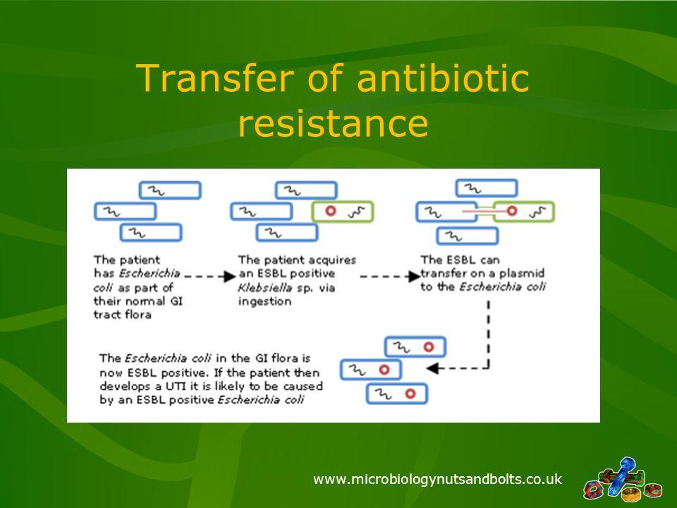 www.microbiologynutsandbolts.co.uk Transfer of antibiotic resistance
