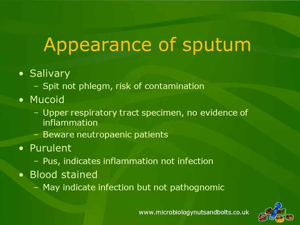 www.microbiologynutsandbolts.co.uk Appearance of sputum Salivary –Spit not phlegm, risk of contamination Mucoid –Upper respiratory tract specimen, no