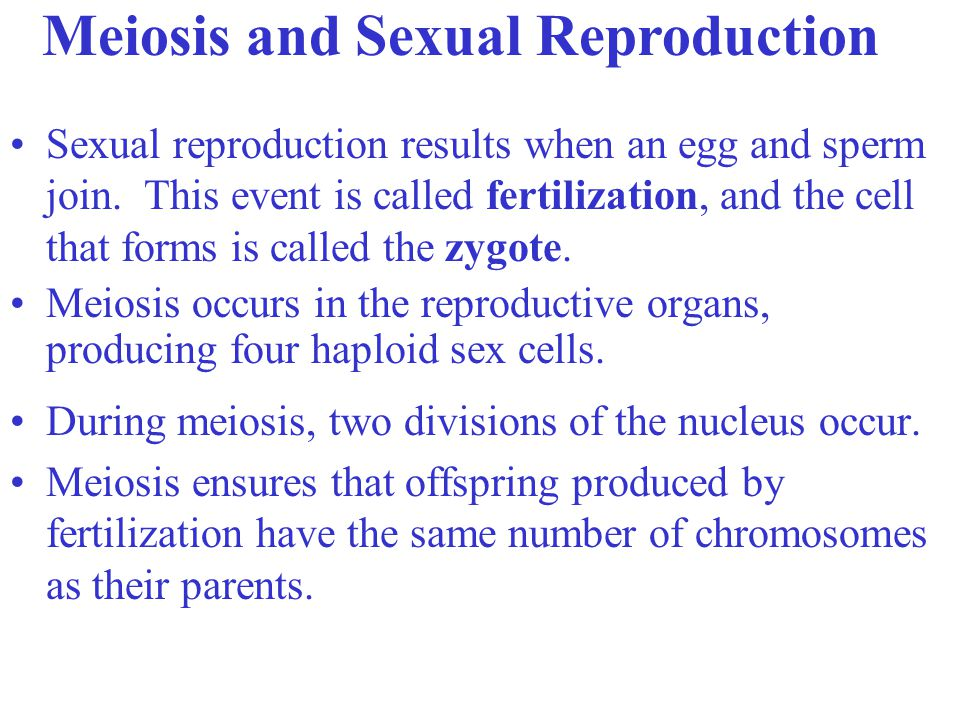 Sexual reproduction results when an egg and sperm join.