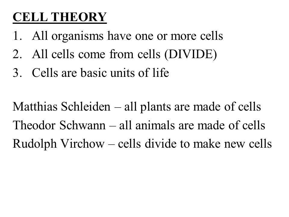 CELL THEORY 1.All organisms have one or more cells 2.All cells come from cells (DIVIDE) 3.Cells are basic units of life Matthias Schleiden – all plants are made of cells Theodor Schwann – all animals are made of cells Rudolph Virchow – cells divide to make new cells