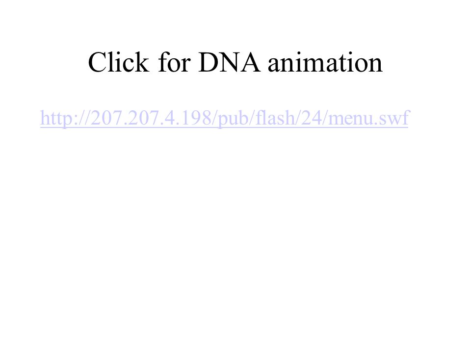Click for DNA animation http://207.207.4.198/pub/flash/24/menu.swf
