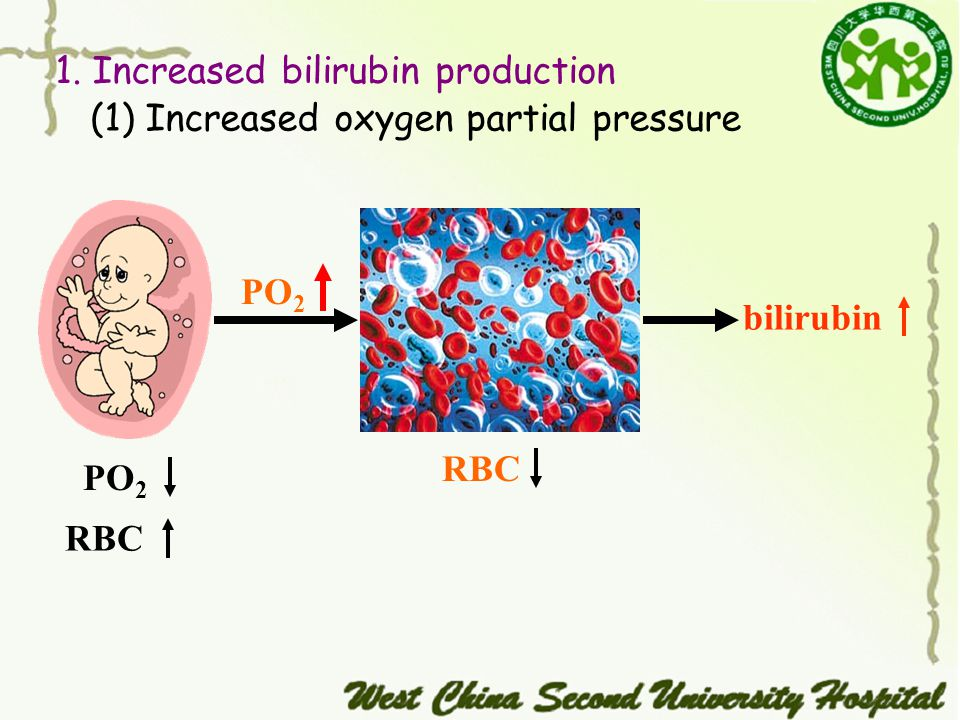 (1) Increased oxygen partial pressure 1. Increased bilirubin production PO 2 RBC bilirubin