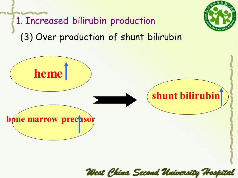 (3) Over production of shunt bilirubin 1.