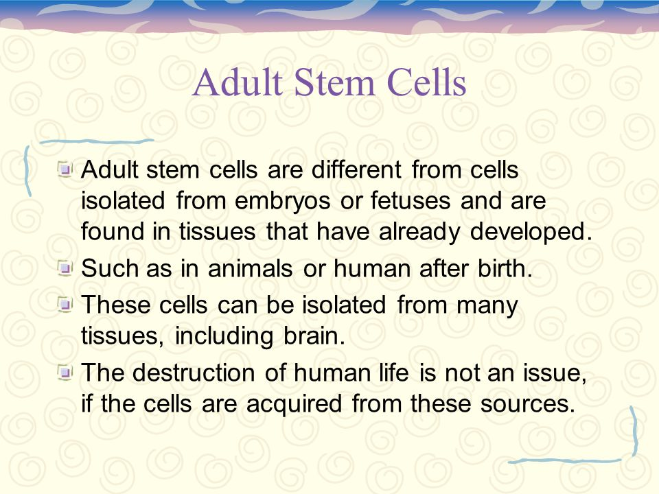What is an embryonic stem cell.