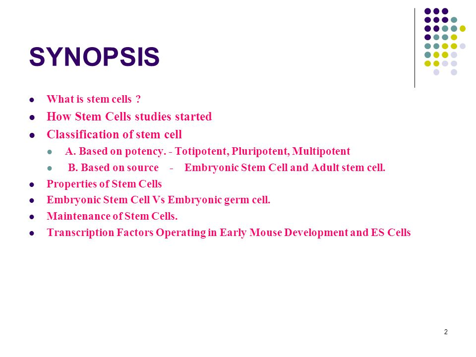 2 SYNOPSIS What is stem cells . How Stem Cells studies started Classification of stem cell A.