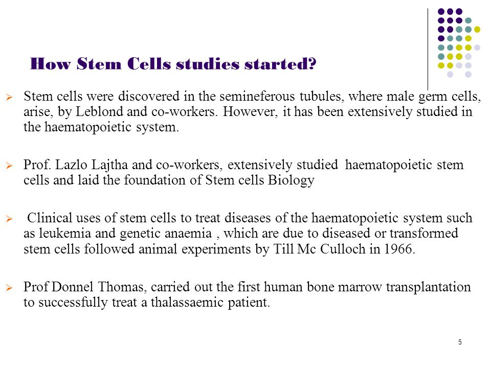 6 Classification of stem cell Based on potency. Based on potency Based on source. Based on source
