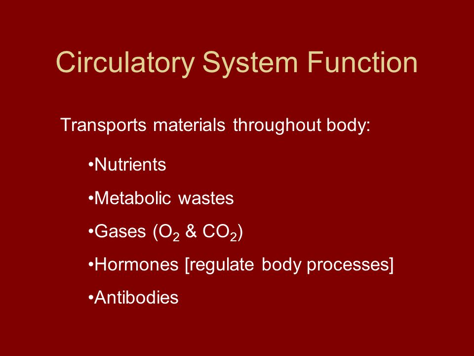 Transports materials throughout body: Nutrients Metabolic wastes Gases (O 2 & CO 2 ) Hormones [regulate body processes] Antibodies Circulatory System