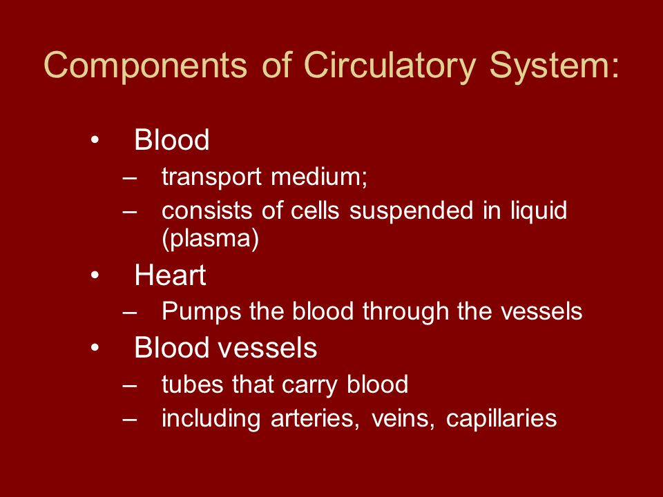 Components of Circulatory System: Blood –transport medium; –consists of cells suspended in liquid (plasma) Heart –Pumps the blood through the vessels Blood vessels –tubes that carry blood –including arteries, veins, capillaries