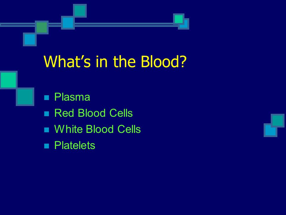What's in the Blood? Plasma Red Blood Cells White Blood Cells Platelets