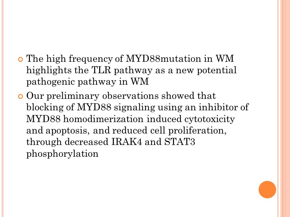 The high frequency of MYD88mutation in WM highlights the TLR pathway as a new potential pathogenic pathway in WM Our preliminary observations showed that blocking of MYD88 signaling using an inhibitor of MYD88 homodimerization induced cytotoxicity and apoptosis, and reduced cell proliferation, through decreased IRAK4 and STAT3 phosphorylation