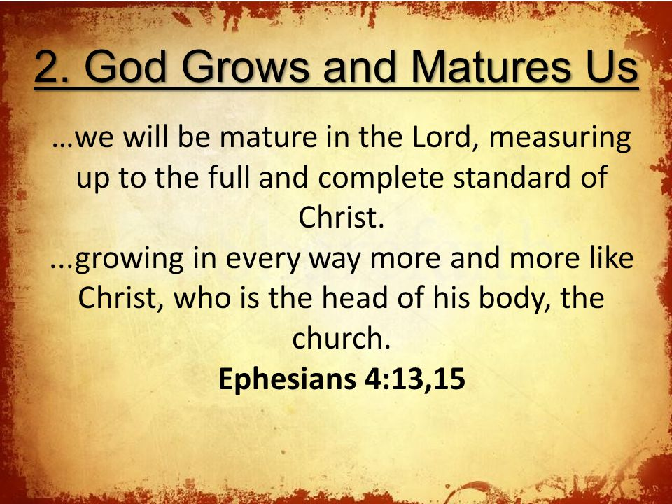 2. God Grows and Matures Us …we will be mature in the Lord, measuring up to the full and complete standard of Christ....growing in every way more and