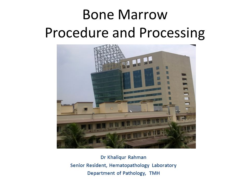 Bone Marrow Procedure and Processing Dr Khaliqur Rahman Senior Resident, Hematopathology Laboratory Department of Pathology, TMH