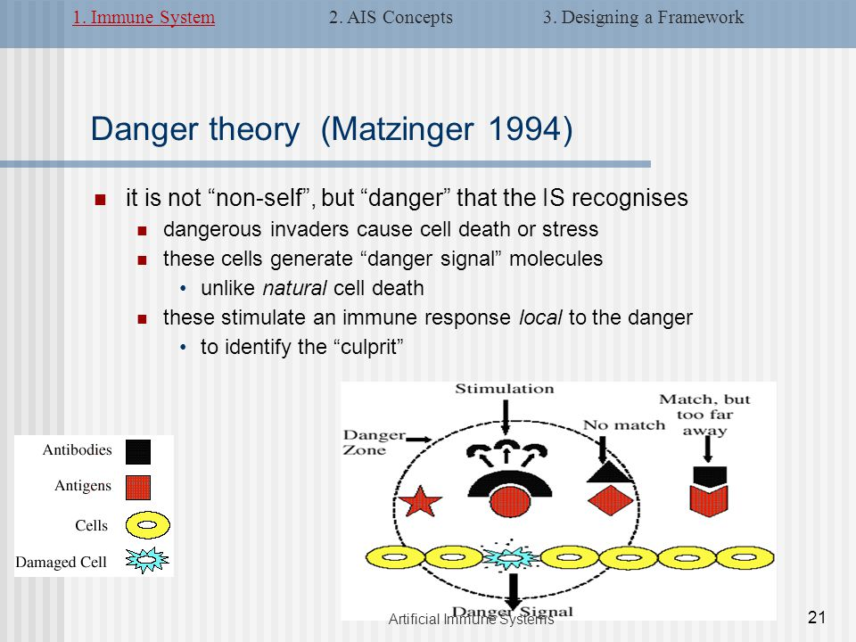Danger theory (Matzinger 1994) it is not non-self , but danger that the IS recognises dangerous invaders cause cell death or stress these cells generate danger signal molecules unlike natural cell death these stimulate an immune response local to the danger to identify the culprit 21 Artificial Immune Systems 1.