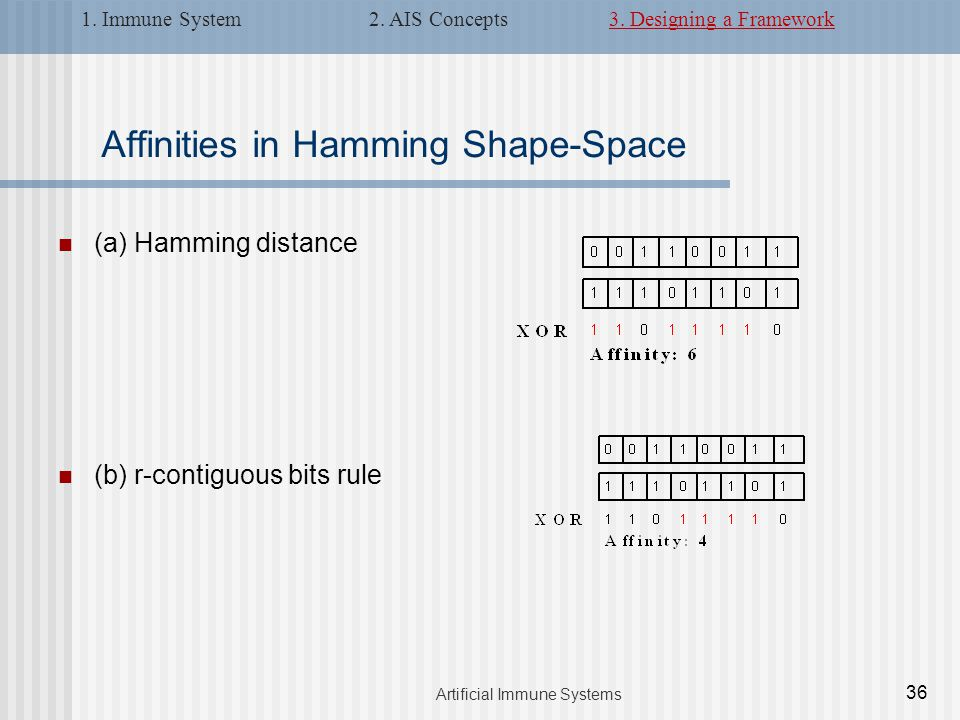 Affinities in Hamming Shape-Space (a) Hamming distance (b) r-contiguous bits rule 36 Artificial Immune Systems 1.