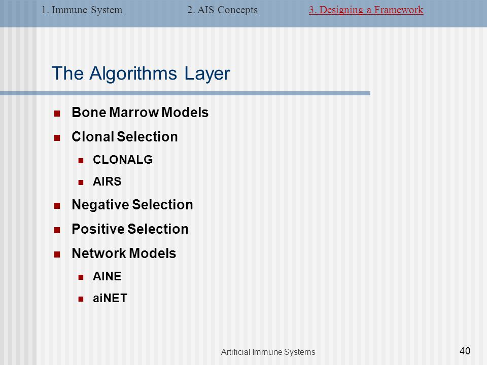 The Algorithms Layer Bone Marrow Models Clonal Selection CLONALG AIRS Negative Selection Positive Selection Network Models AINE aiNET 40 Artificial Immune Systems 1.
