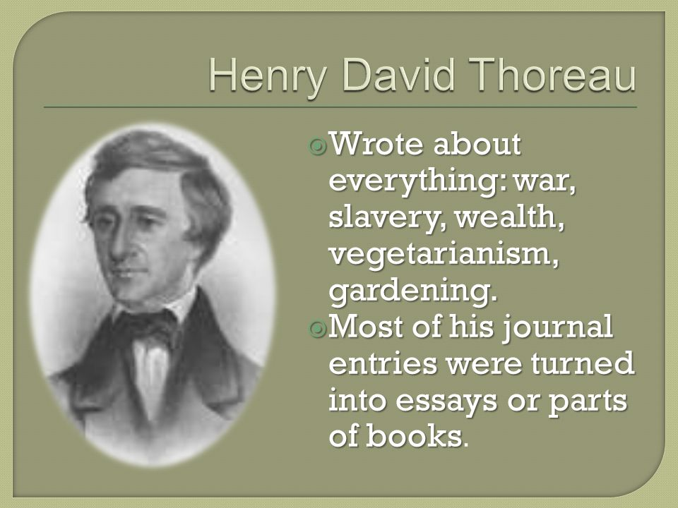  Wrote about everything: war, slavery, wealth, vegetarianism, gardening.
