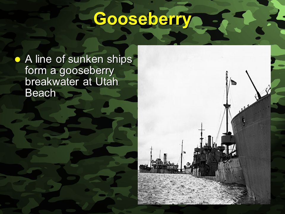 Slide 52 Gooseberry A line of sunken ships form a gooseberry breakwater at Utah Beach A line of sunken ships form a gooseberry breakwater at Utah Beach