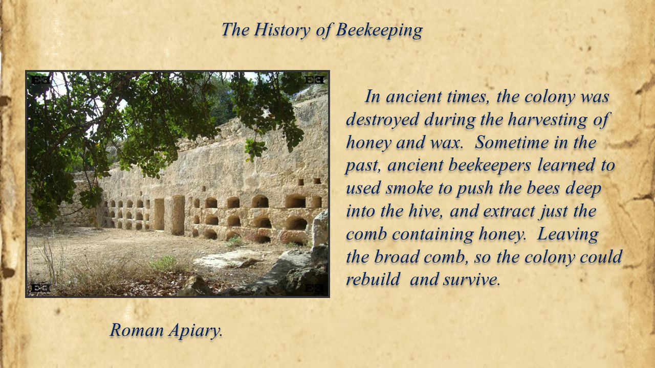 Historical Beekeepers A.I.