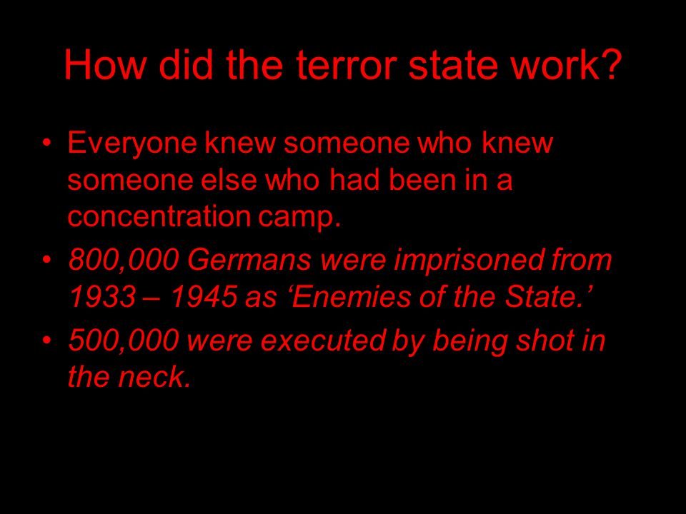 How did the terror state work.