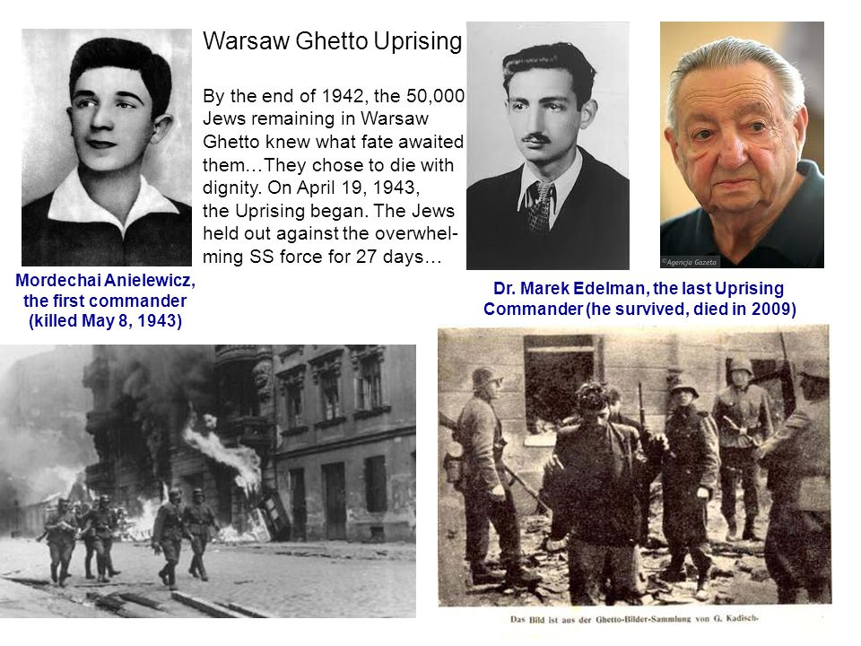 Warsaw Ghetto Uprising By the end of 1942, the 50,000 Jews remaining in Warsaw Ghetto knew what fate awaited them…They chose to die with dignity.