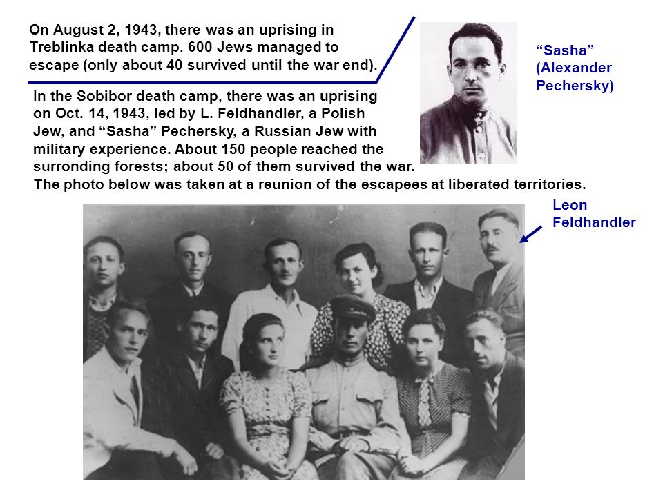 Leon Feldhandler Sasha (Alexander Pechersky) On August 2, 1943, there was an uprising in Treblinka death camp.