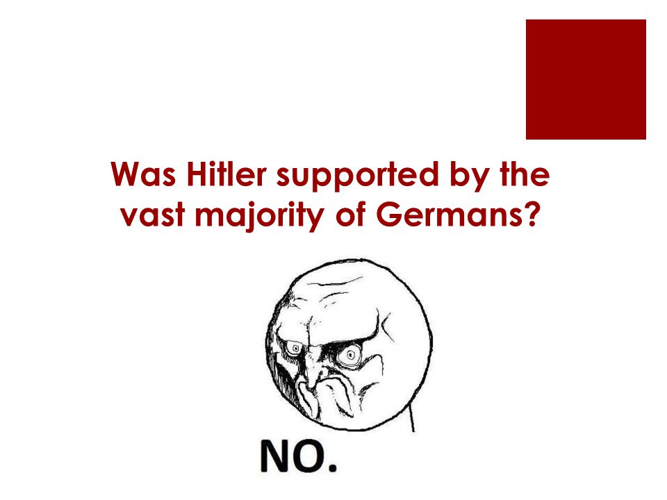 Was Hitler supported by the vast majority of Germans