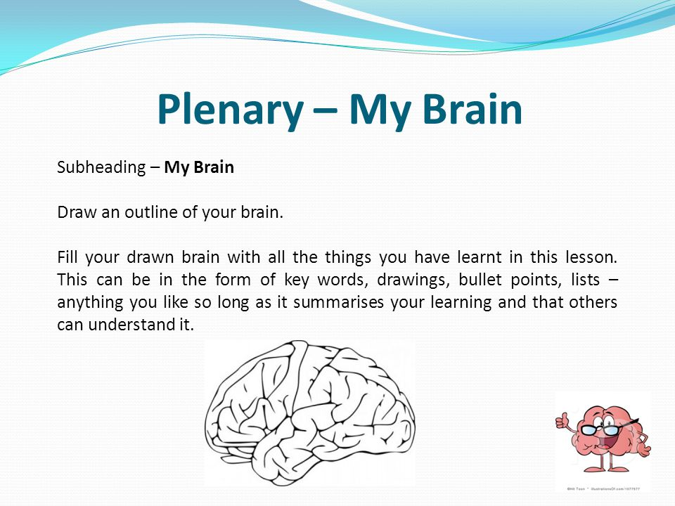 Subheading – My Brain Draw an outline of your brain. Fill your drawn brain with all the things you have learnt in this lesson. This can be in the form
